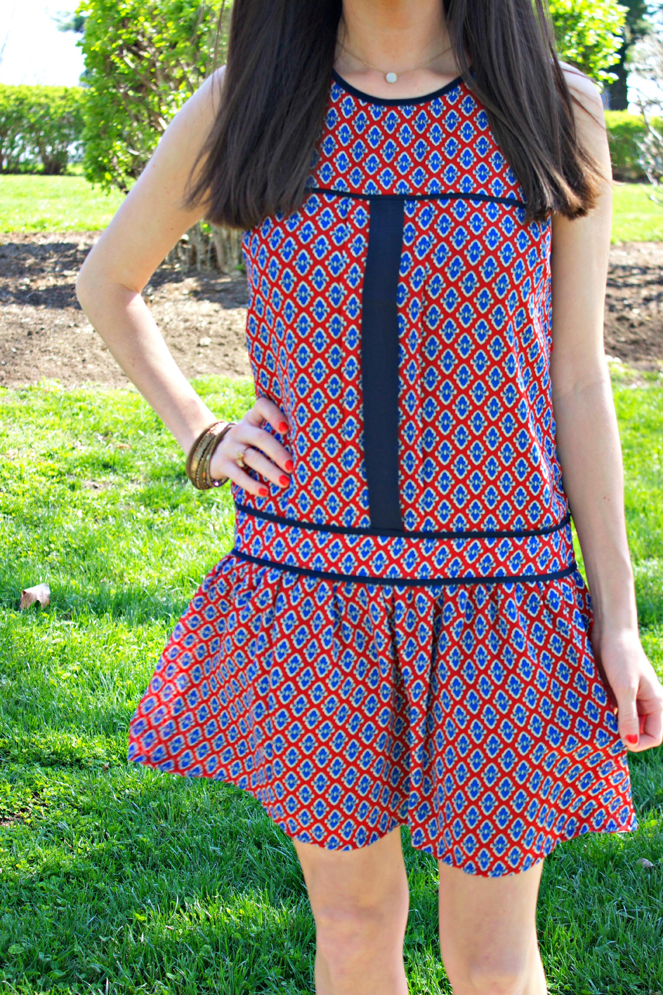 Red and Blue Drop Waist Piperlime Dress