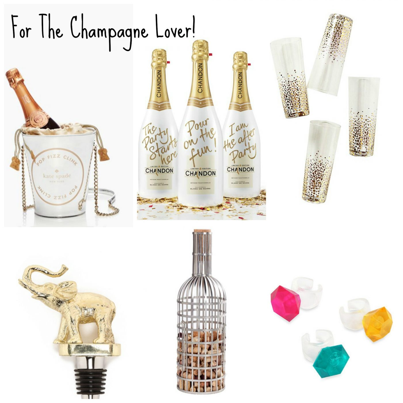 champagne themed gifts - Christmas Gifts For Girlfriend 2014