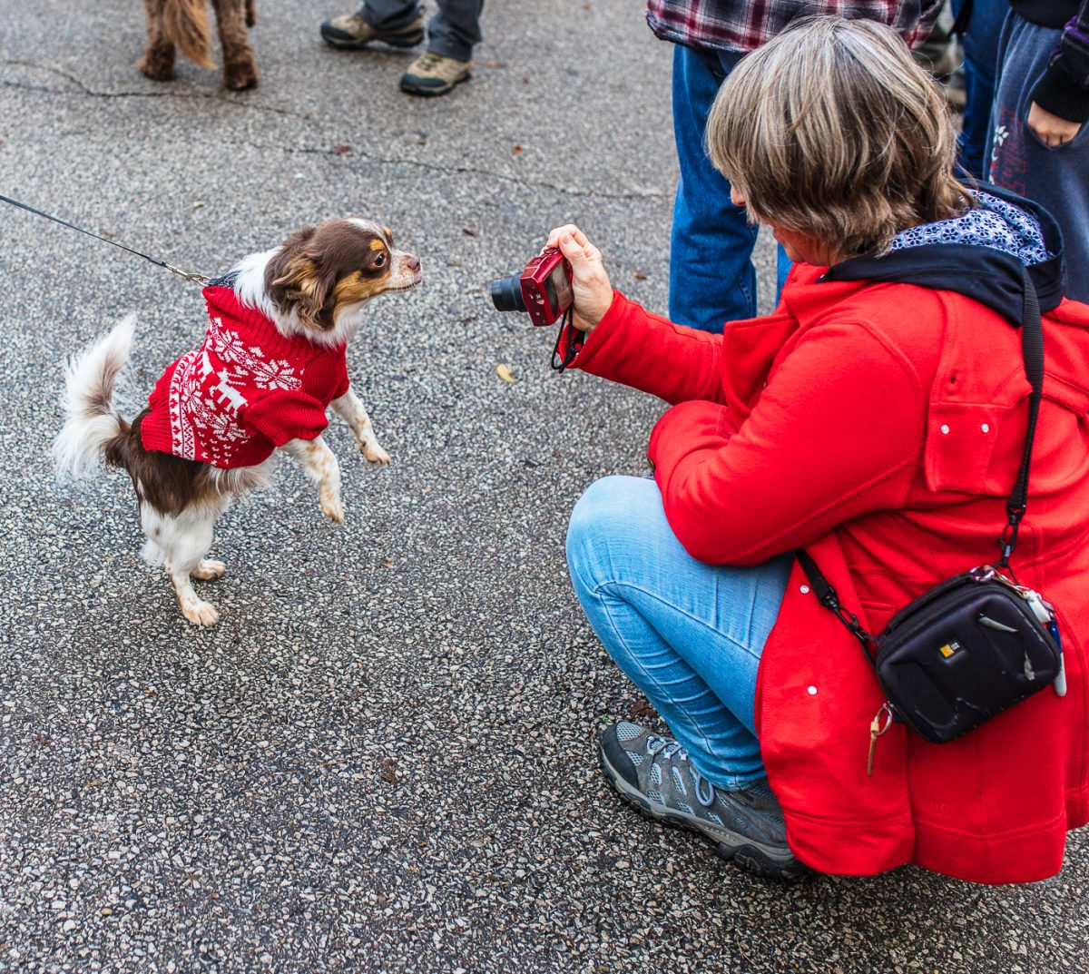 Mt. Adams Reindog Parade Cincinnati Holiday Events